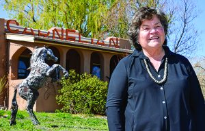 New Mexico House Representative Susan Herrera District 41